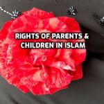 I Have Heard That Parents Have 14 Rights…And Children Have 7 Rights…